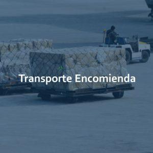 Carrusel_ordn_transporte_xpyme-01